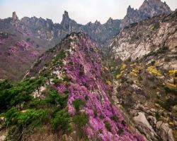大珠山风景区