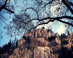 珠山国家森林公