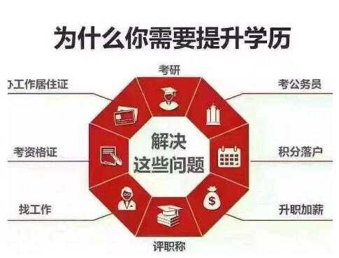 网络远程教育